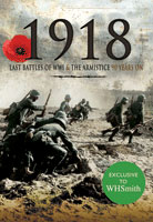 Armistice & the Final Year of the Great War