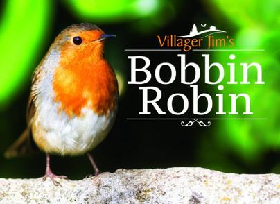 Villager Jim's Bobbin Robin
