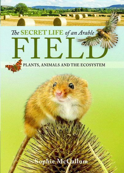 The Secret Life of an Arable Field